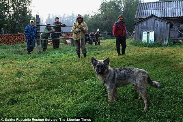 Âm thầm đi theo bố vào rừng rồi bị lạc, bé gái 4 tuổi sống sót trở về sau 12 ngày nhờ chú chó trung thành sưởi ấm mỗi đêm - Ảnh 4.