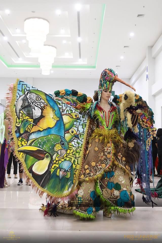 Ngoài Bánh mì của HHen Niê, đây là những bộ trang phục dân tộc chặt chém nhất sân khấu Miss Universe 2018 - Ảnh 12.