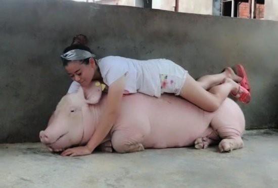 Việc nhẹ lương cao dành cho phái đẹp: Cô gái trẻ kiếm 3 tỉ đồng mỗi năm nhờ việc hôn lợn - Ảnh 2.