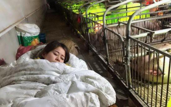 Việc nhẹ lương cao dành cho phái đẹp: Cô gái trẻ kiếm 3 tỉ đồng mỗi năm nhờ việc hôn lợn - Ảnh 5.
