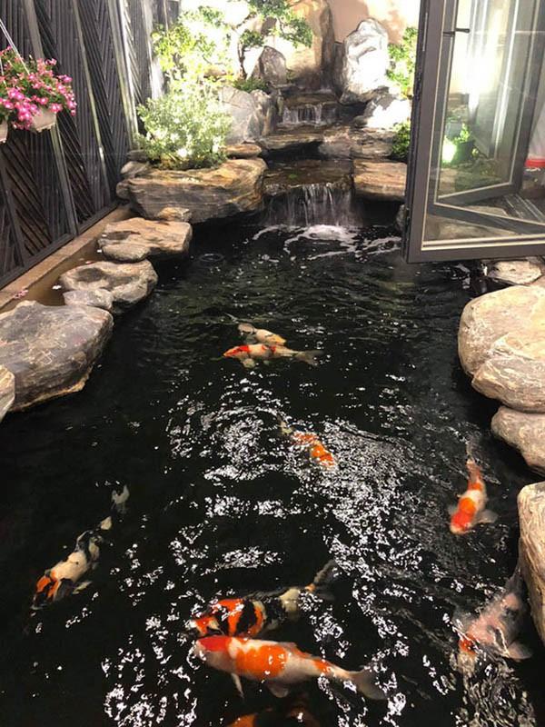 Cuộc sống giàu có trong 2 căn biệt thự xa hoa, riêng hồ cá đã hơn 1 tỷ của Cao Thái Sơn - Ảnh 8.