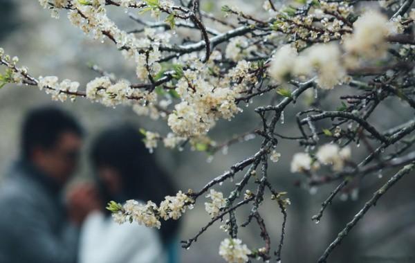 Những cô dâu vai trần thách thức thời tiết giá lạnh để có bộ ảnh cưới nghìn like - Ảnh 12.