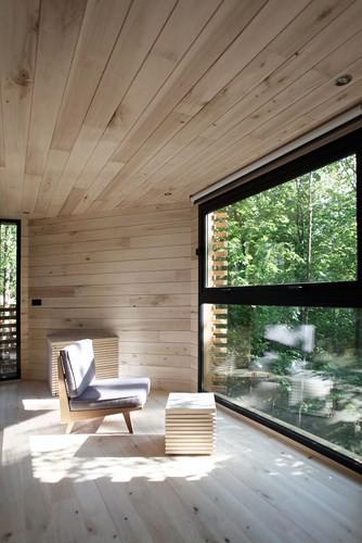 Độc đáo ngôi nhà gỗ trên cây sồi trăm tuổi - Ảnh 5.