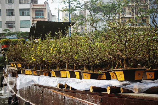 Cận Tết, ghé bến Bình Đông coi chợ nổi, tìm lại Sài Gòn xưa trong cảnh giao thương trên bến dưới thuyền - Ảnh 15.