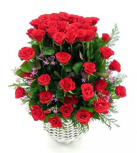 Các loại hoa ngày Tết mang lại may mắn và hạnh phúc cho gia chủ - Ảnh 3.