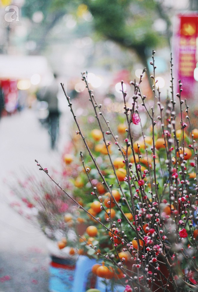 Những ngày cuối năm, đi chợ Tết để mua về niềm vui, gợi về kí ức thời ông bà anh - Ảnh 38.
