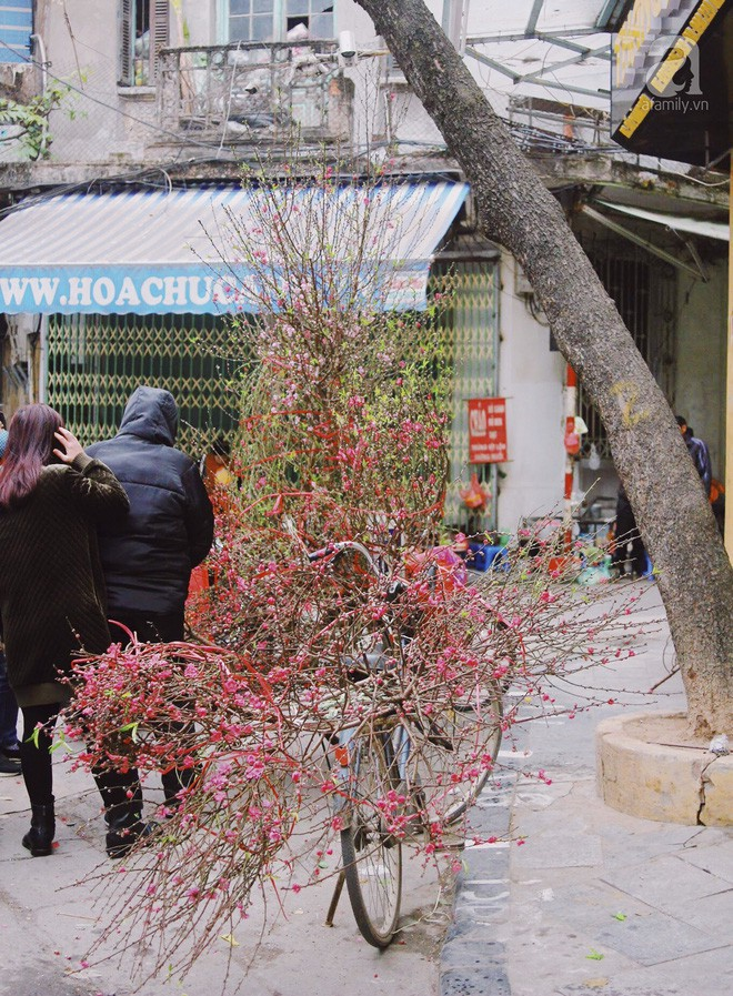 Những ngày cuối năm, đi chợ Tết để mua về niềm vui, gợi về kí ức thời ông bà anh - Ảnh 37.