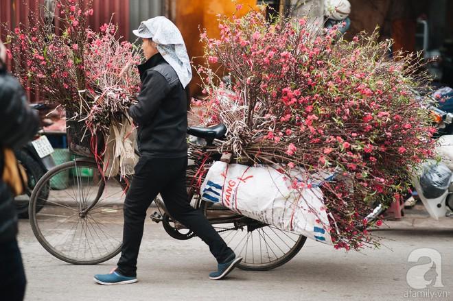 6 loại hoa cổ truyền chưa bao giờ hết hot mỗi độ Tết đến, xuân về - Ảnh 2.