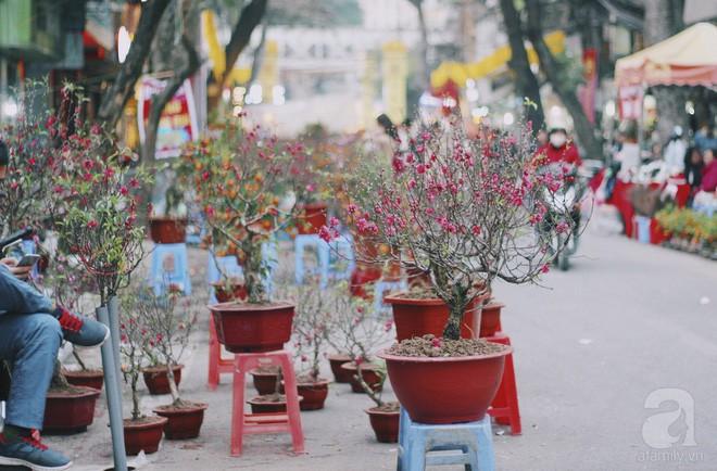 6 loại hoa cổ truyền chưa bao giờ hết hot mỗi độ Tết đến, xuân về - Ảnh 3.