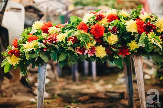 6 loại hoa cổ truyền chưa bao giờ hết hot mỗi độ Tết đến, xuân về - Ảnh 10.