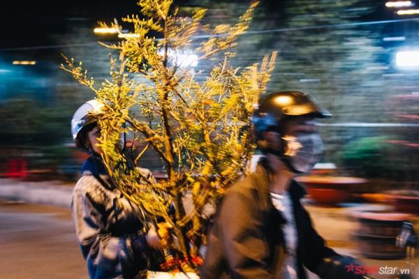 Co ro trắng đêm bán dịp Tết, người nông dân vẫn thấp thỏm vì tâm lý đợi đêm 30 mua hoa giờ chót - Ảnh 11.