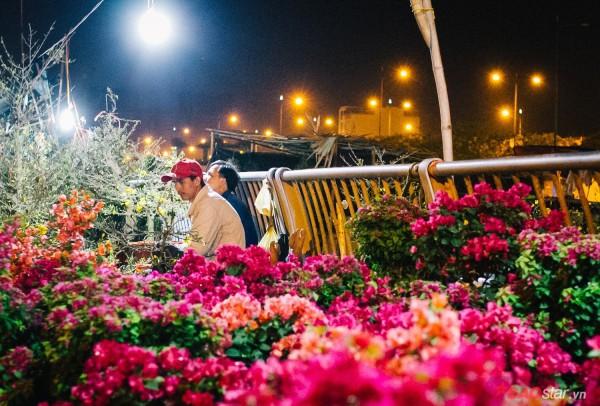 Co ro trắng đêm bán dịp Tết, người nông dân vẫn thấp thỏm vì tâm lý đợi đêm 30 mua hoa giờ chót - Ảnh 3.