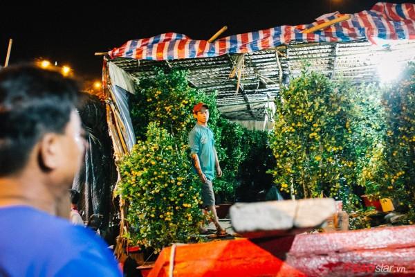 Co ro trắng đêm bán dịp Tết, người nông dân vẫn thấp thỏm vì tâm lý đợi đêm 30 mua hoa giờ chót - Ảnh 8.