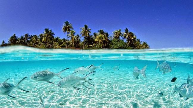 Nước biển ngày càng dâng, vậy mà hòn đảo này đang có phản ứng rất lạ khiến khoa học phải đau đầu - Ảnh 3.