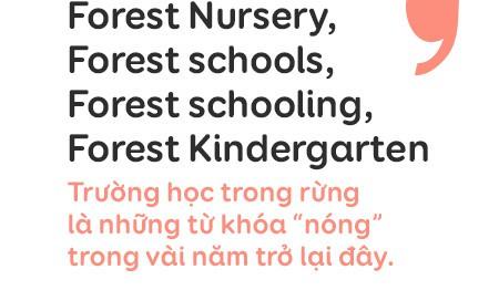 """Trường mẫu giáo lạ lùng giữa Sài Gòn: không có lớp học để trẻ thỏa sức """"dầm mưa dãi nắng"""" cả ngày - Ảnh 3."""