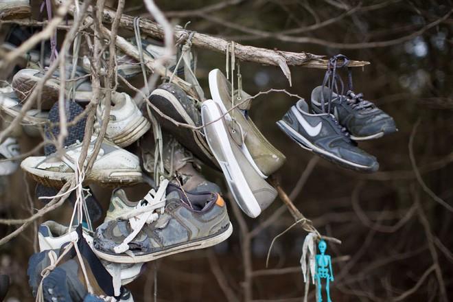 Khu rừng bí ẩn ở Canada: Hàng trăm đôi sneakers bị đóng đinh lên cây, không ai biết lý do vì sao - Ảnh 19.