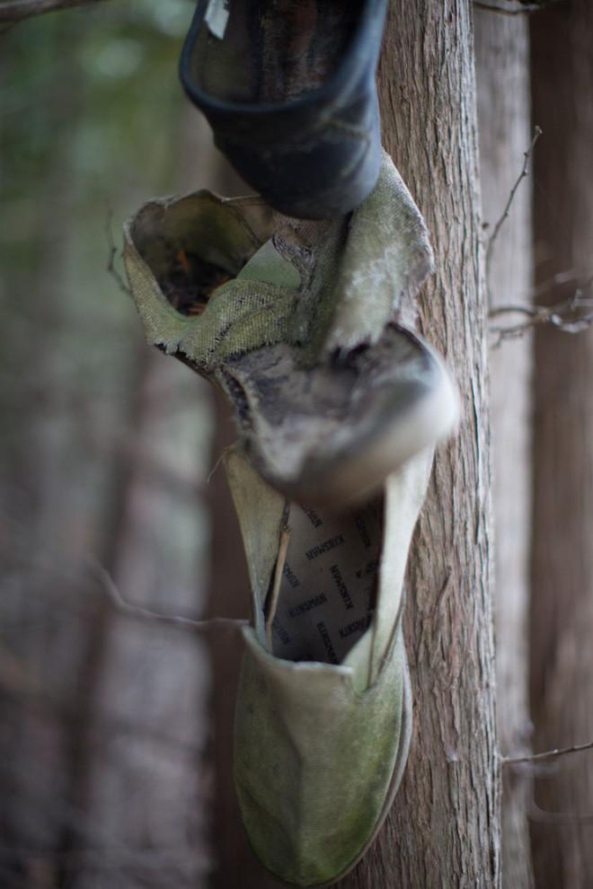 Khu rừng bí ẩn ở Canada: Hàng trăm đôi sneakers bị đóng đinh lên cây, không ai biết lý do vì sao - Ảnh 25.