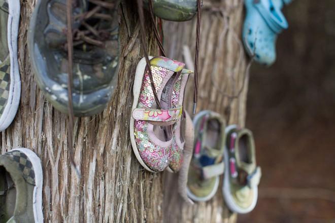 Khu rừng bí ẩn ở Canada: Hàng trăm đôi sneakers bị đóng đinh lên cây, không ai biết lý do vì sao - Ảnh 29.
