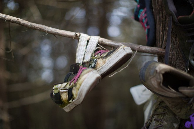 Khu rừng bí ẩn ở Canada: Hàng trăm đôi sneakers bị đóng đinh lên cây, không ai biết lý do vì sao - Ảnh 7.