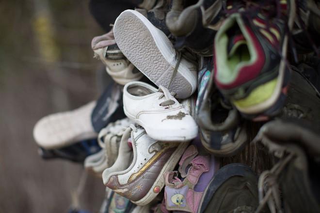 Khu rừng bí ẩn ở Canada: Hàng trăm đôi sneakers bị đóng đinh lên cây, không ai biết lý do vì sao - Ảnh 10.