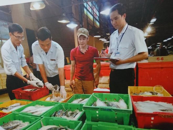 TP.HCM: 174 cơ sở kiểm tra vi phạm an toàn thực phẩm - Ảnh 2.