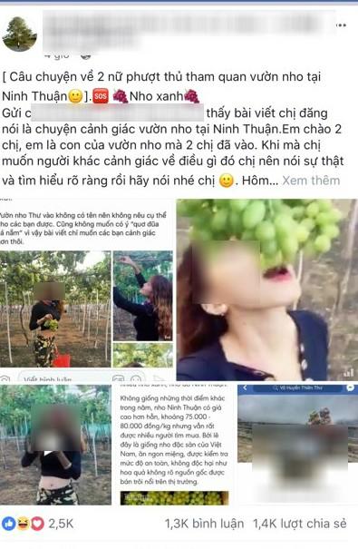 Hai cô gái phượt thủ từng đi Sài Gòn - Hà Nội trong vòng 40 tiếng lại gây tranh cãi khi tố chủ vườn nho chặt chém? - Ảnh 3.