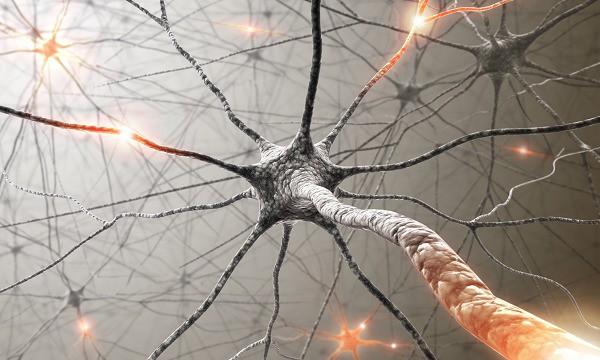 Căn bệnh ALS khiến nhà vật lý nổi tiếng Stephen Hawking tử vong nguy hiểm thế nào? - Ảnh 4.