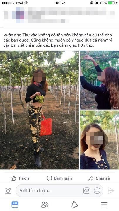 Nữ phượt thủ ngửa cổ ăn nho trên giàn, còn tố chủ vườn Ninh Thuận: Con gái chủ vườn tức giận lên tiếng! - ảnh 1
