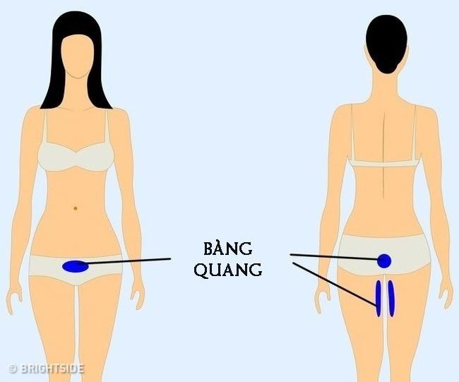 9 vị trí nếu thấy đau thì bạn nên cẩn trọng và đi khám càng sớm càng tốt - Ảnh 9.