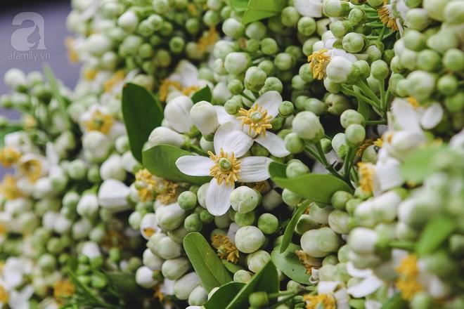Xao xuyến và êm dịu những sắc hoa tháng 3 Hà Nội - Ảnh 8.