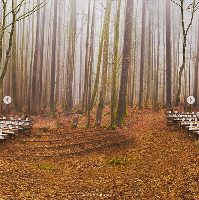 Có show nào xôm hơn Chanel: Dàn sao hot Hoa-Hàn-Thái hội tụ, cùng lạc lối trong khu rừng mùa thu - Ảnh 21.