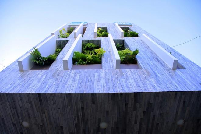 Ngôi nhà sâu 35m với khu vườn trên sân thượng đẹp muốn hờn ở Đà Nẵng - Ảnh 3.