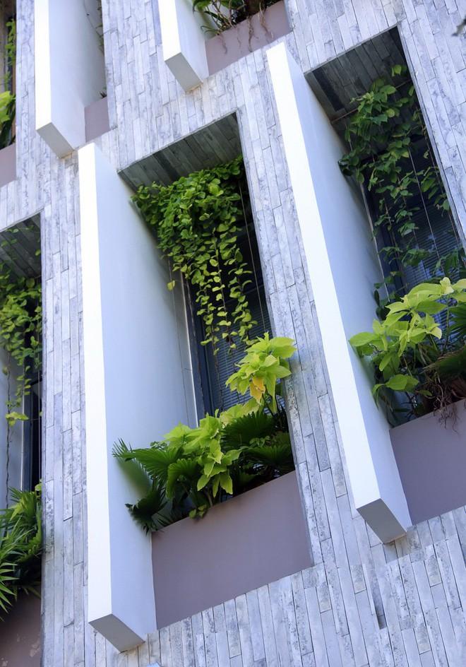 Ngôi nhà sâu 35m với khu vườn trên sân thượng đẹp muốn hờn ở Đà Nẵng - Ảnh 5.