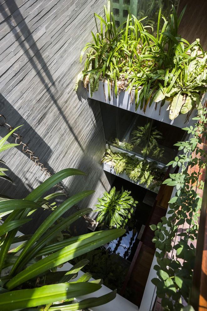 Ngôi nhà sâu 35m với khu vườn trên sân thượng đẹp muốn hờn ở Đà Nẵng - Ảnh 6.