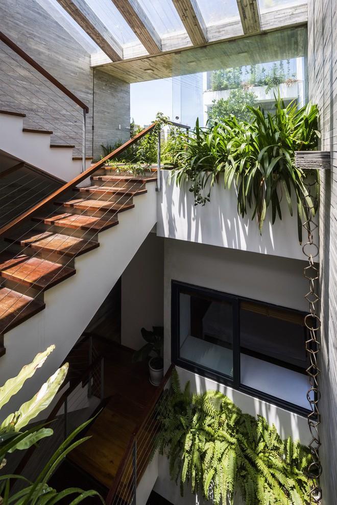 Ngôi nhà sâu 35m với khu vườn trên sân thượng đẹp muốn hờn ở Đà Nẵng - Ảnh 7.