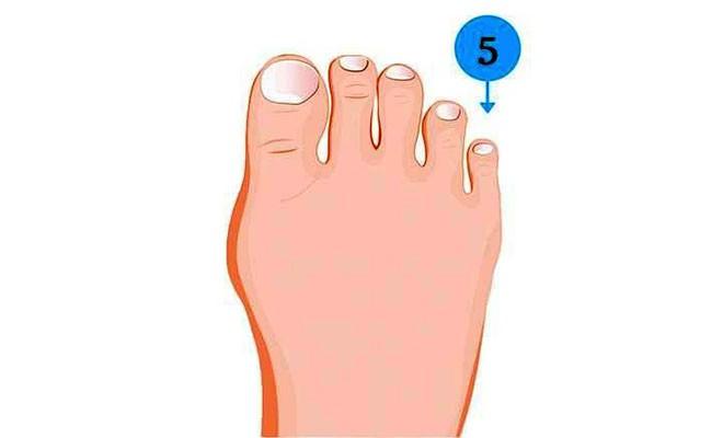 Soi ngay kích cỡ ngón chân để khám phá nhiều bí mật thú vị về tính cách của bản thân - Ảnh 5.