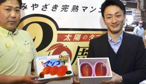 Cặp xoài siêu đắt, bán với giá gần 85 triệu đồng - Ảnh 1.