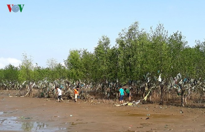 Ảnh: Kinh hoàng rừng cây treo đầy rác ở Thanh Hóa - Ảnh 4.