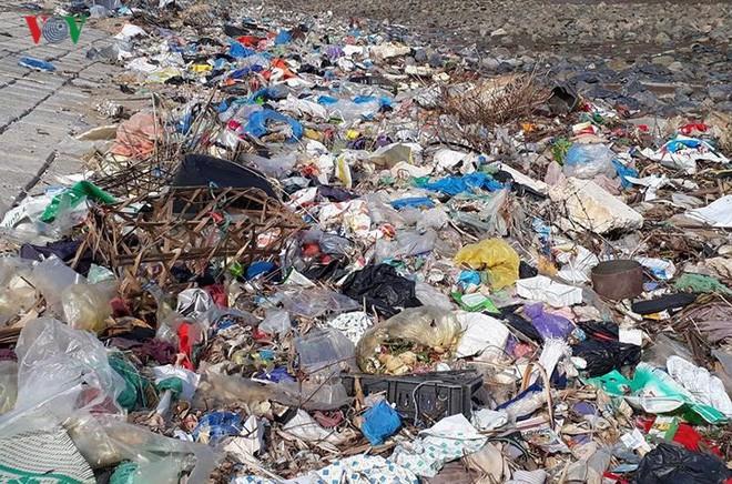 Ảnh: Kinh hoàng rừng cây treo đầy rác ở Thanh Hóa - Ảnh 5.