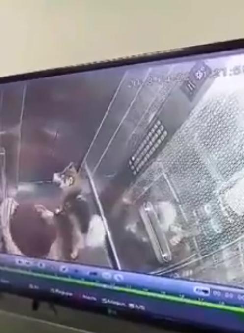 Clip: Thanh niên để chó phóng uế bừa bãi trong thang máy khiến mọi người không dám dùng thang - Ảnh 2.