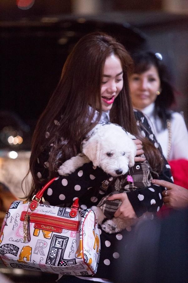 Trước Đức Phúc, đã có Angela Phương Trinh và Minh Hằng cũng bế chó lên thảm đỏ - Ảnh 5.