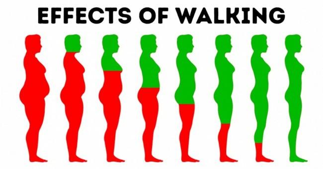 Đi bộ 15 phút mỗi ngày thôi nhưng 10 lợi ích bạn nhận được là quá nhiều so với công sức bỏ ra - Ảnh 1.