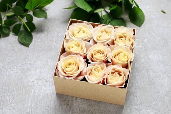 3 cách cắm hoa đẹp lung linh không thua gì mua tiệm - Ảnh 3.