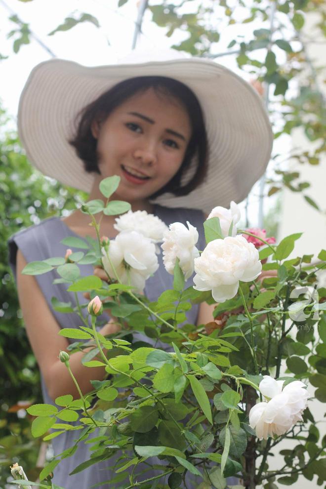 Ngắm khu vườn hoa hồng rộng đến 3 ha đẹp ngất ngây đã giúp cô gái 27 tuổi thoát khỏi bệnh trầm cảm ở Hà Nội - Ảnh 16.