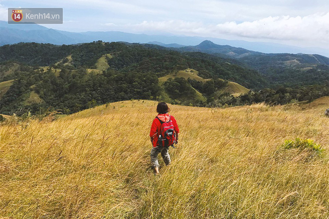 Những tai nạn đáng tiếc ở Tà Năng - Phan Dũng: Cung đường trekking đẹp nhất Việt Nam nhưng cũng đầy hiểm nguy khó lường - Ảnh 9.