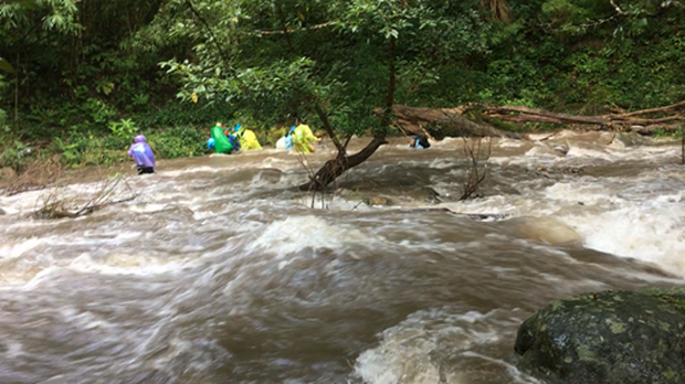 Những tai nạn đáng tiếc ở Tà Năng - Phan Dũng: Cung đường trekking đẹp nhất Việt Nam nhưng cũng đầy hiểm nguy khó lường - Ảnh 7.