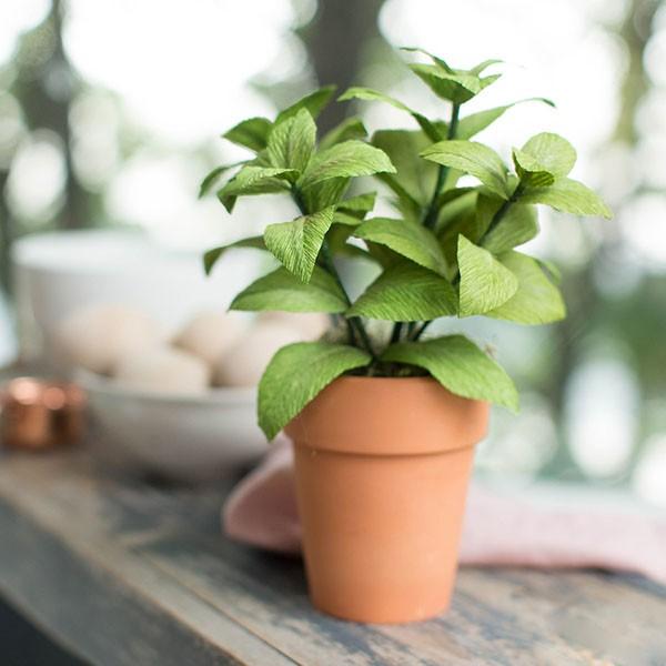 3 cách làm chậu cây xanh mát trang trí góc bếp thân yêu - Ảnh 3.