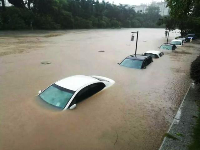 Trung Quốc: Những hình ảnh dở khóc dở cười trong mùa bão lũ ngập lụt - Ảnh 1.