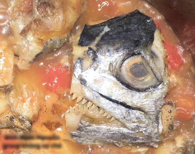 Tuyệt phẩm cá thu sốt cà bước ra từ phim kinh dị em dâu tương lai nấu cho chị chồng khiến dân tình cười rơi rụng - Ảnh 3.