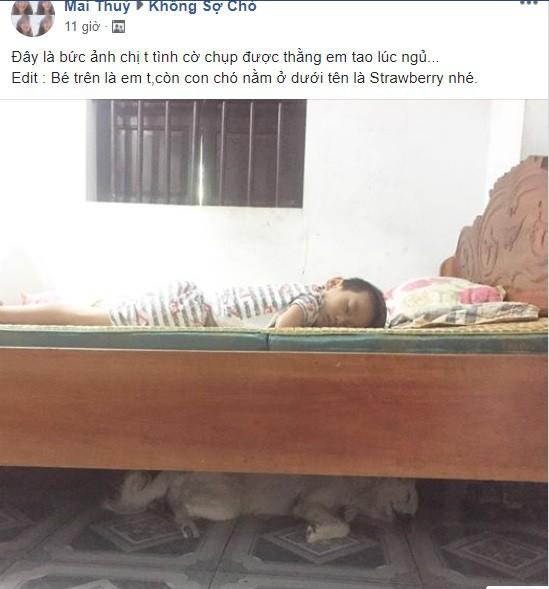 Giữa ngày nắng nóng nhìn bức ảnh cả baby lẫn thú cưng im lìm say giấc, dân mạng đồng loạt thả tim - Ảnh 1.